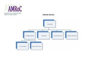Organi Sociali dell'AMRoC
